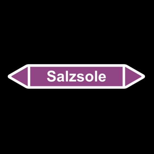 Salzsole