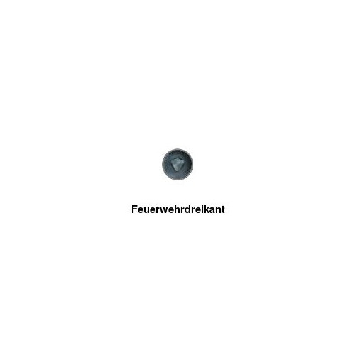 Absperrpfosten Ø 60 mm, herausnehmbar, zum Einbetonieren, FwD, 2 Ösen