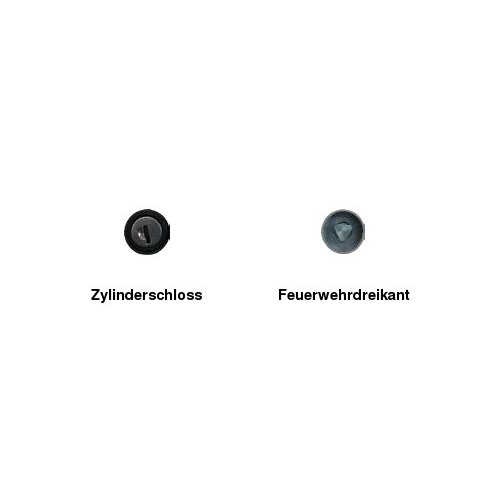 Absperrpfosten Ø 60 mm, herausnehmbar, zum Einbetonieren, FwD oder ZS, ohne Ösen
