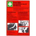 Erste Hilfe bei Unfällen durch Verätzung (Aushang)
