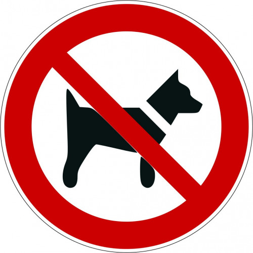 Mitführen von Hunden verboten - P021